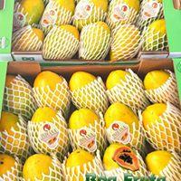 Boa Fruta